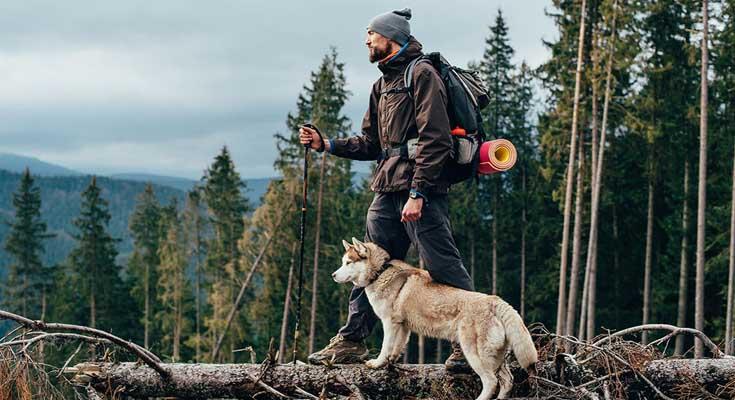 Excursionismo con tu Perro