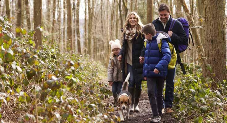 Practicar Senderismo Con tu Familia