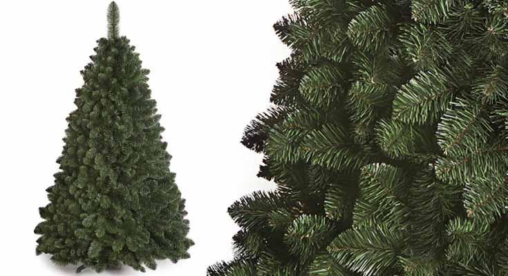 DWA ARBOL Navidad Grande Abeto del Cáucaso Nuevo